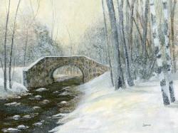 Wilson Creek